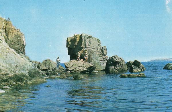 A FOUND BEACH -omnibus-:大島慶太郎
